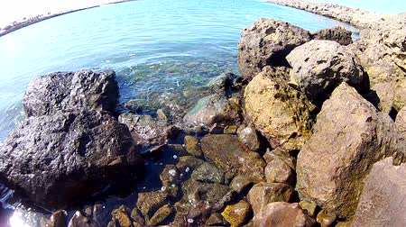Gentle lapping of Pacific Ocean water against the rocks. Стоковые видеозаписи