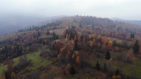 opadavý : Aerial Drone Footage View: Flight over autumn mountain with forests and fields. Carpathian Mountains, Ukraine, Europe. Majestic landscape. Beauty world. 4K Dostupné videozáznamy