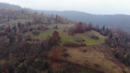Aerial Drone Footage View: Flight over autumn mountain with forests and fields. Carpathian Mountains, Ukraine, Europe. Majestic landscape. Beauty world. 4K Stockvideo