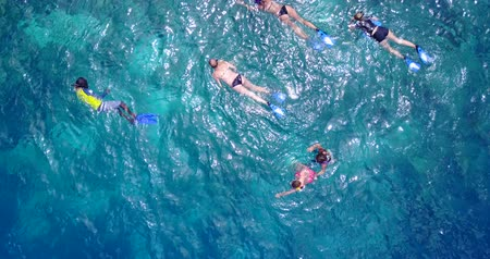z lotu ptaka : v11848 many people young boys girls snorkeling over coral reef with drone aerial flying view in crystal clear aqua blue shallow water