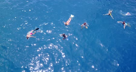 bird's eye view : v11856 many people young boys girls snorkeling over coral reef with drone aerial flying view in crystal clear aqua blue shallow water
