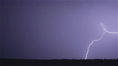 aydınlatma : Various lightning bolts strike forest night landscape, sound included Stok Video