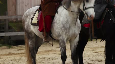 príncipe : Medieval horserider coming to town with royal flag, envoy bringing news to crowd Stock Footage