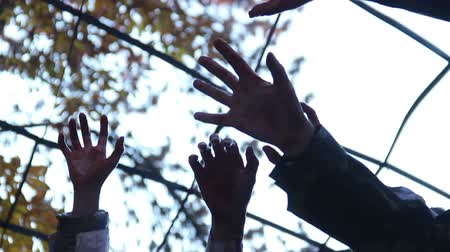 bloodshed : Many monsters stretching bloody hands up, trying to escape from captivity Stock Footage
