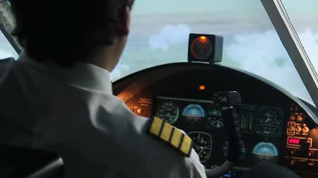 aircrew : Pilot filling out flight documentation, plane flying in autopilot mode, tourism Stock Footage