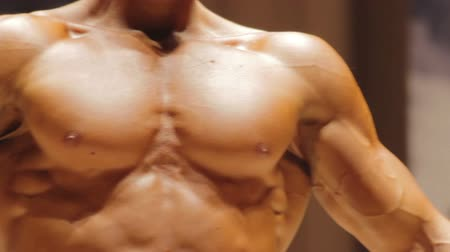 enduring : Handsome self-confident man showing muscular chest and strong arms, bodybuilding Stock Footage