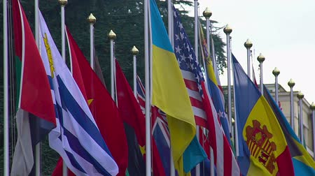 unicef : National flags of summit participants, strategic partners, diplomatic relations