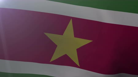 paramaribo : Flag of Suriname waving on flagpole in the wind, national symbol of freedom