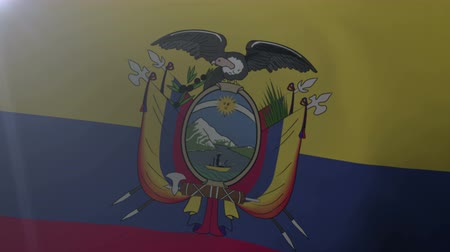 quito : Flag of Ecuador waving on flagpole in the wind, national symbol of freedom Stock Footage