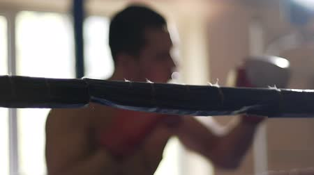 attacks : Active boxer shadow fighting in ring, training hard to defeat rival during match Stock Footage
