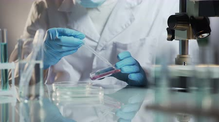 readiness : Lab technician checking material by creating chemical reaction with reagents Stock Footage
