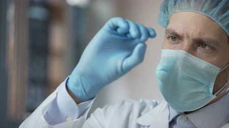 germinated : Food laboratory worker carefully checking quality of cereals harvest for export Stock Footage