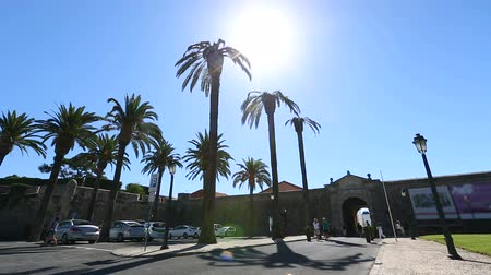 fortifying : Parking lot with tall palm trees in front of arch in fortifying wall, sunny day Stock Footage