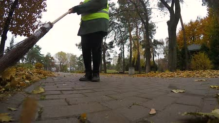 swabber : Woman janitor cleaning park from leaves in autumn, most hard and low-paid job
