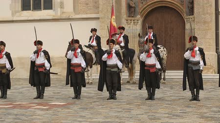 nákrčník : Performance in Zagreb, Cravat Regiment standing in a line near St. Marks church Dostupné videozáznamy