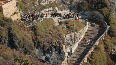 УВР : Donkeys and mules offered to tourists for ride around Santorini steep hills