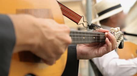 kytarista : Hands of street musician playing guitar professionally, traditional music