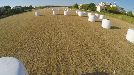 palheiro : Haystack carefully packed after harvesting campaign on farm field, aerial view Vídeos