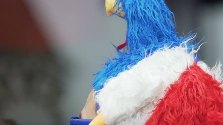 mascot : Male football fan from France wearing mascot headgear and enjoying match