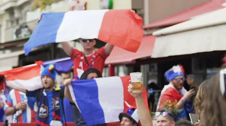 french team : Pleased football fans wearing funny headgear and waving flags of France, match Stock Footage