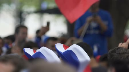 french team : Patriotic football fans with funny headgear cheering their country at match
