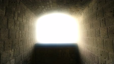 rebirth : Way to heaven, point of view of dying person, light at end of tunnel, hypnosis