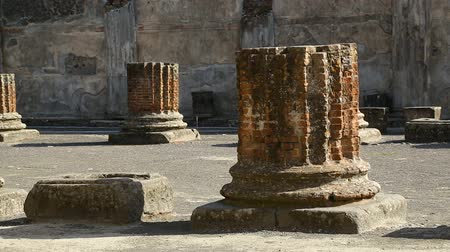 neapol : Preserved remains of columns on square in Pompeii, lizard sitting on stone wall