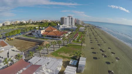 slunečník : Aerial view along beach with palms and straw parasols in Larnaca city, travel