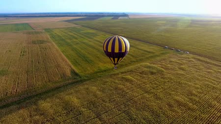 victorious : Air balloon floating over fields, landing of championship contestant, winner Stock Footage
