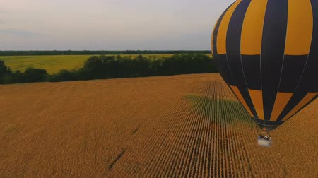 prominent : Air balloons flying over fields separated by tree-lines, ballooning championship
