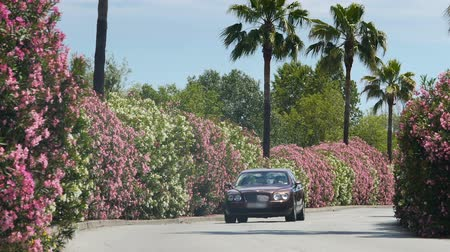 konak : Posh car running down road with blooming bushes, approaching private mansion Stok Video
