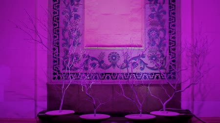 kelet : Illuminated wall with unusual decor in oriental style, eastern culture, hotel