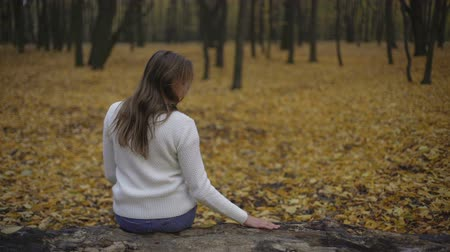 wrzesień : Girl sitting in autumn park alone, thinking about past and broken relationship