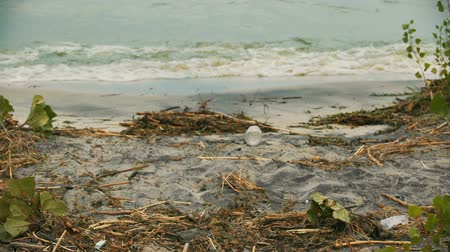 hijenik olmayan : Seashore suffering from water pollution, toxic rubbish degrading soil quality