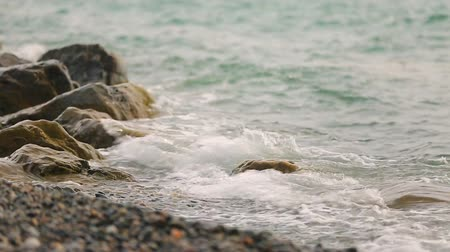 субтропический : Waves washing gravel beach, beautiful Black Sea coast, relaxing trip to Georgia
