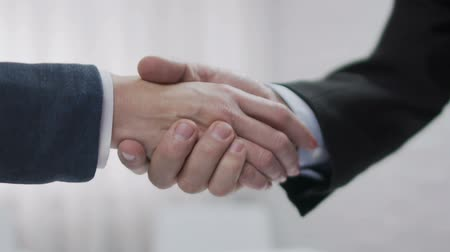corporate affairs : Handshake deal, agreement about business plan, successful negotiation, startup Stock Footage