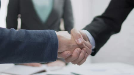 corporate affairs : Male and female partners shaking hands, come to agreement, diplomatic relations