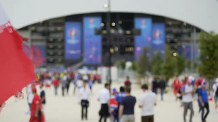 french team : Football supporters gathering near stadium to watch soccer match, championship