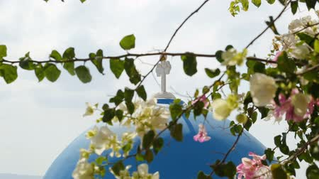 comemoração : Cross standing on blue church dome, branches blooming in front, Greece tourism