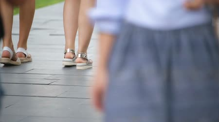 footgear : Female friends walking together in park, spending time outdoors, legs closeup Stock Footage