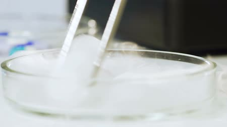 simmer : Molecular gastronomy, liquid nitrogen freezes bio samples, impressive reaction