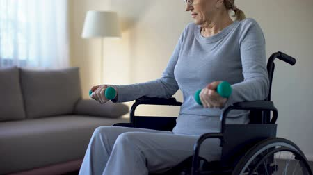 sedmdesátá léta : Athletic grandmother in wheelchair lifting dumbbells at home, keeping fit, sport