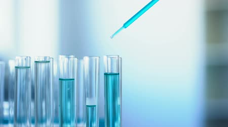 flasks : Chemical scientist pouring blue liquid in laboratory tubes, medical examination