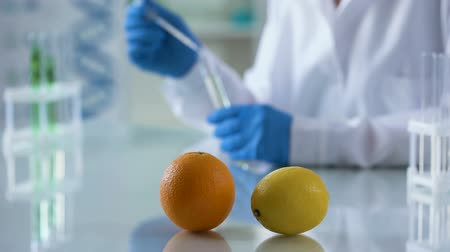 сущность : Orange and lemon lab table, chemist working on perfumery extract, aromatherapy