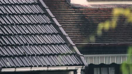 pia : Rainwater flowing down house roof, autumn city.