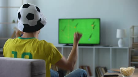 brazilian : Brazilian team supporter actively cheering favourite football team, match on tv