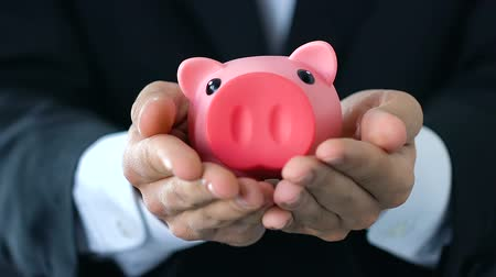 economical : Male hands holding out piggy bank, money saving concept, company budget, finance Stock Footage