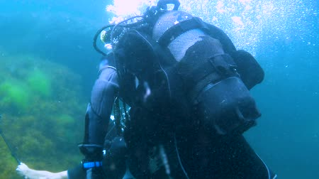 derinlik : People wearing diving equipment swimming under water, active holidays, tourist Stok Video