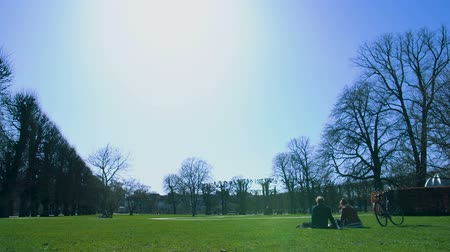 danimarka : Clear blue sky over green park, couple resting outside on weekend, tranquility
