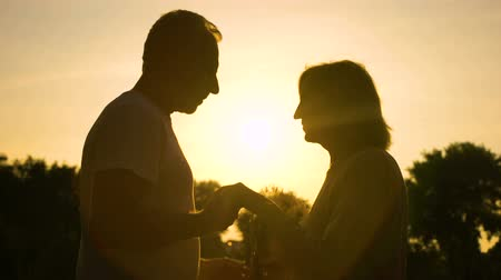 plezant : Silhouette of gentleman kissing hand to wife, senior couple in love, romance Stockvideo